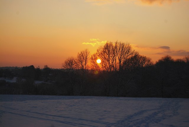 The sun setting behind Brookhurst Wood