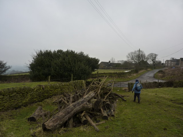 Wood pile at Barlow Grange