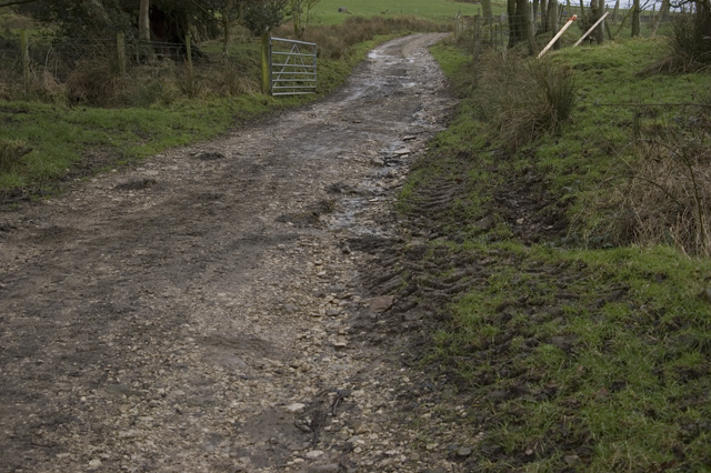 Farm Road near Burns Farm