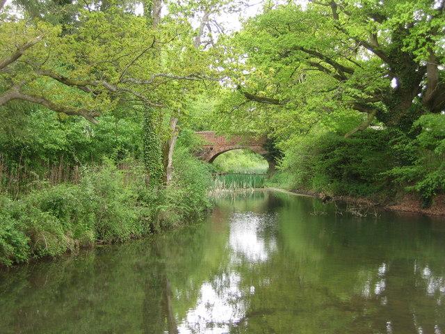 Slade's Bridge - Basingstoke Canal
