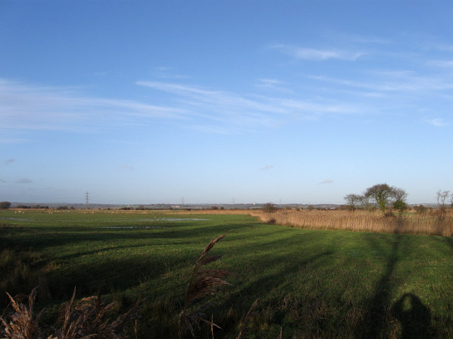 Little East Marsh