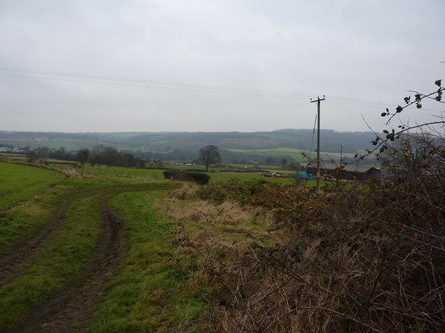 On a footpath through farmland