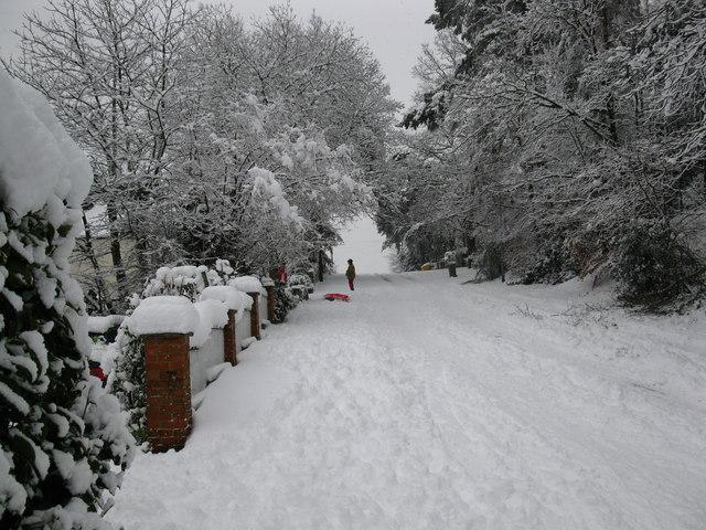 Pinehill Road sledge slope