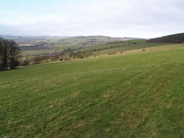 Farmland on the flank of Warden Hill