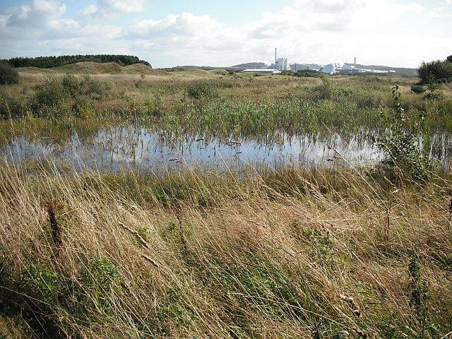 Gailes Marsh Nature Reserve