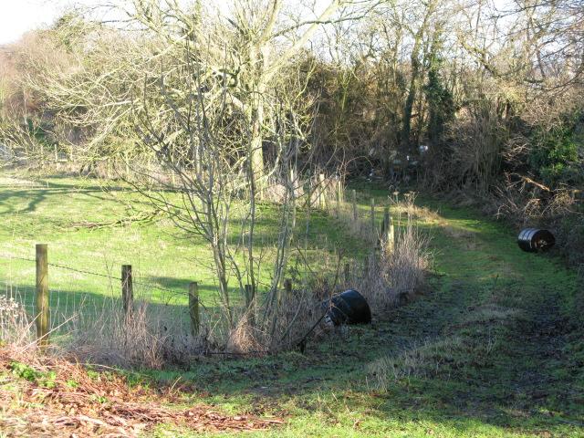 Farm track off Bank Road