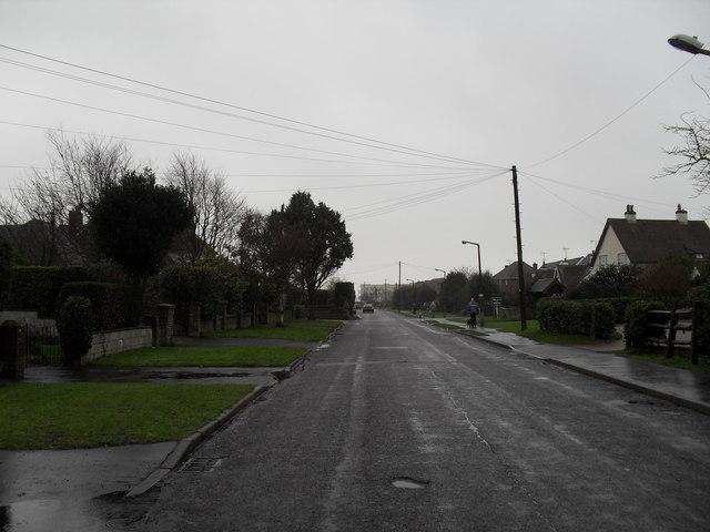 Walking the dog in Broadmark Lane