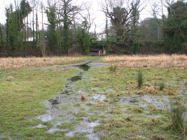 Flooded path to Whitlingham Lane
