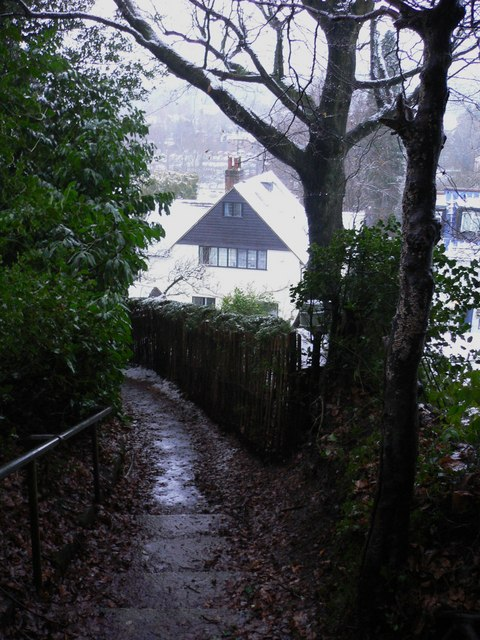 Footpath in Haslemere