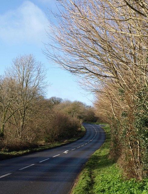 Marldon Road