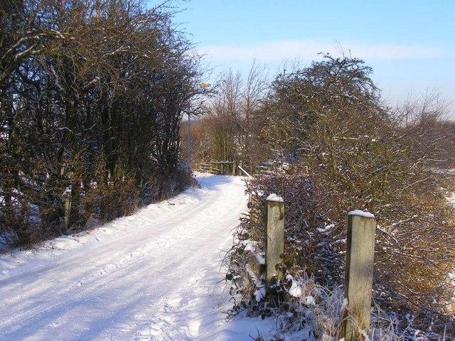 Hinds Lane