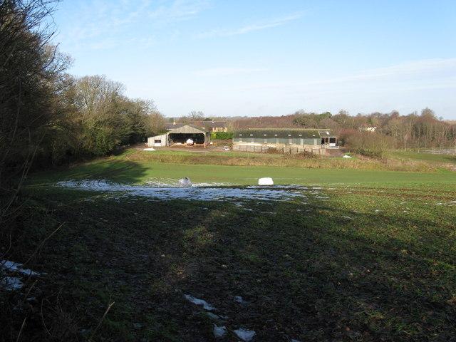 Threal's Farm near Abingworth
