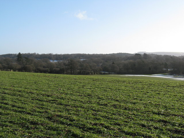 View SE over open field
