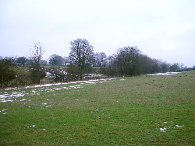 South-facing slope above Thorsgill Beck