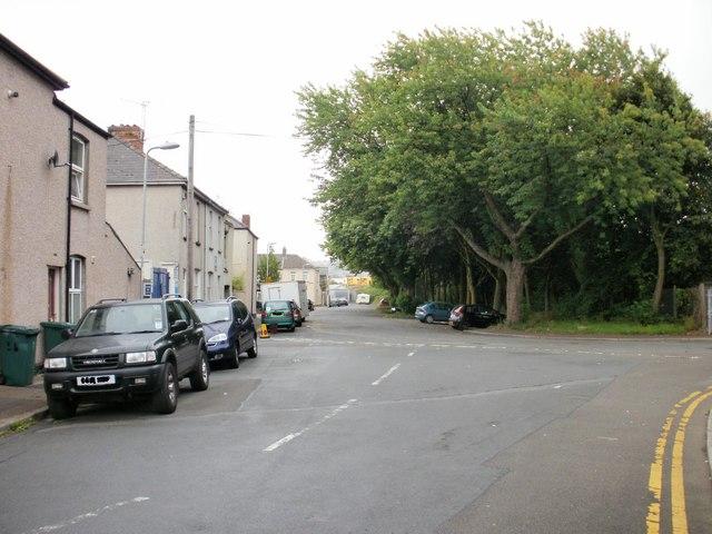 Tregare Street trees, Newport