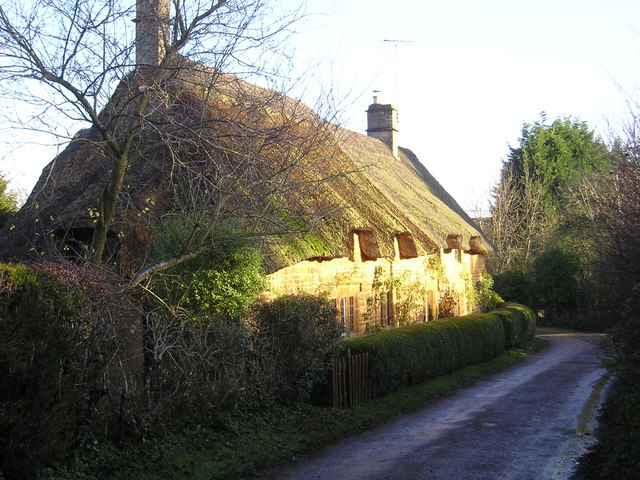 Winter Sunshine on Thatch
