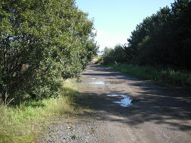 Road, Shewalton Moss