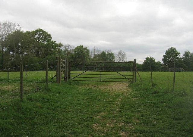 Field by Blackstocks Lane