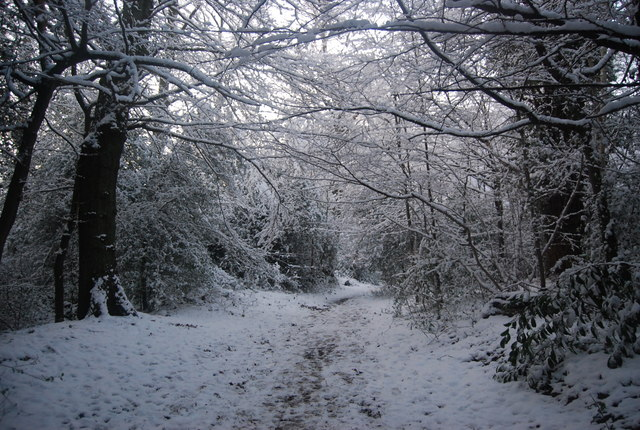 Tunbridge Wells Circular Path, Southborough Common