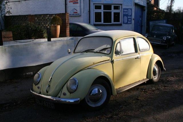 Frosty bug