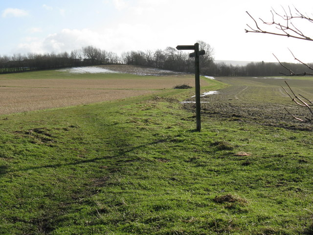 Junction of footpath with bridleway