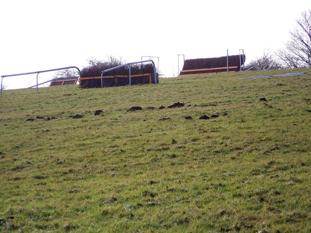 National Hunt practice fences near Ubley