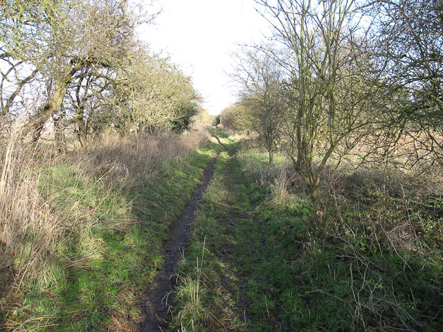 Track to Elms Road