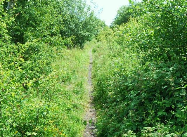 Path along uplifted railway track