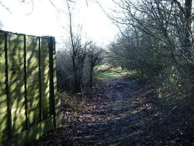 Footpath opens out towards golf course