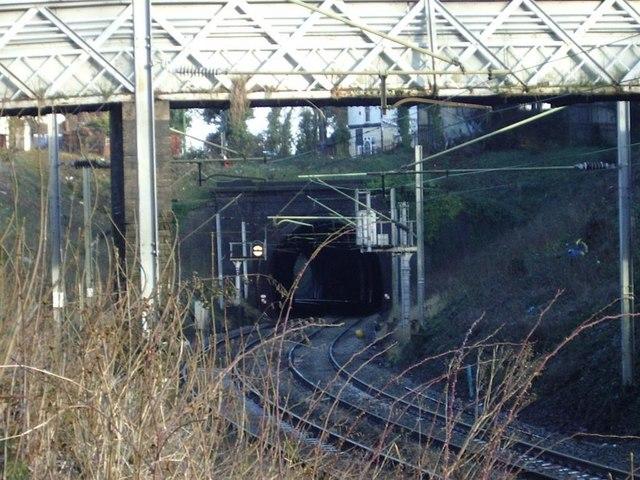 Footbridge and Tunnel entrance, Handsworth Wood
