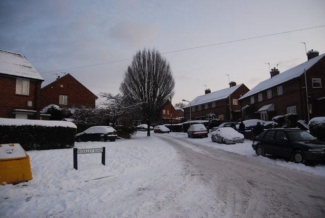 Snow on Woolley Rd