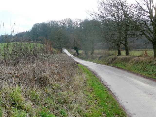 Lane to Budlake
