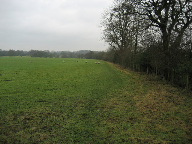 The Field to the West of Page Fold