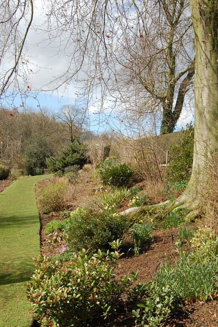 Herbaceous border at Coton Manor Garden (2)
