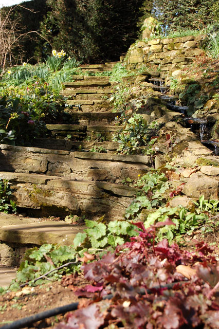 Steps and water feature at Coton Manor Gardens
