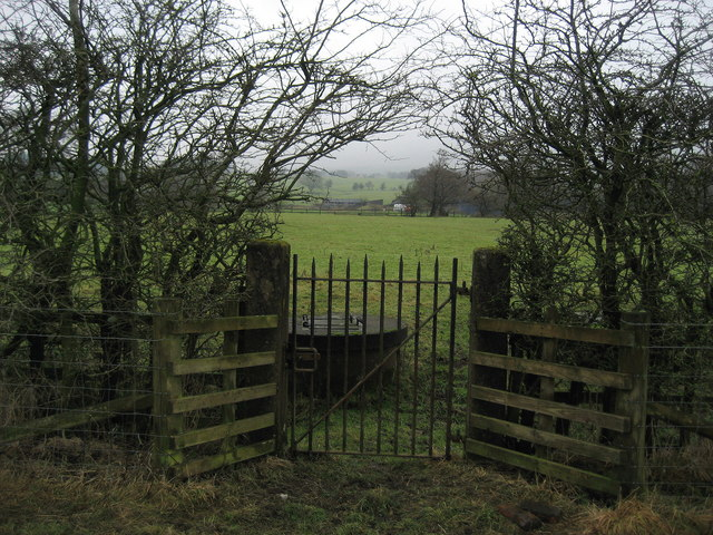 Gate in Hedgerow near Page Fold