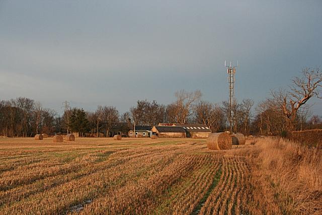 Waterford Farm