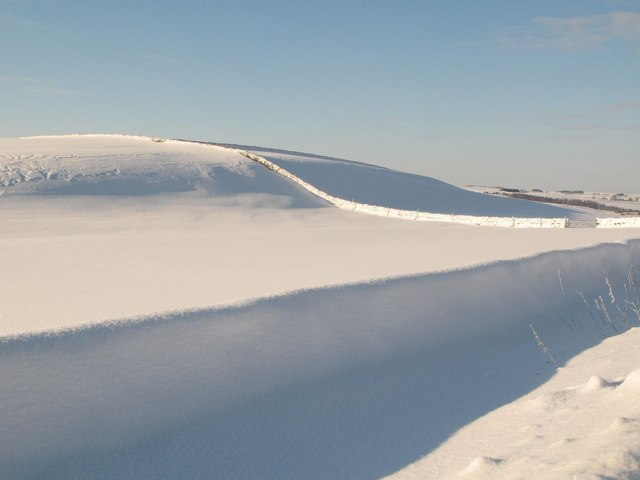 Holms Hill in the snow (2)