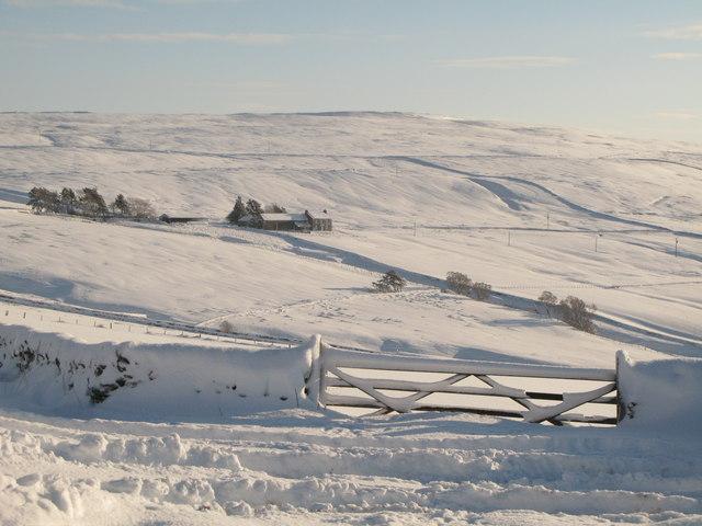Sinderhope Gate in the snow