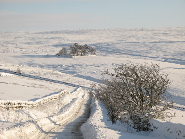 The upper valley of Hollocks Burn in the snow