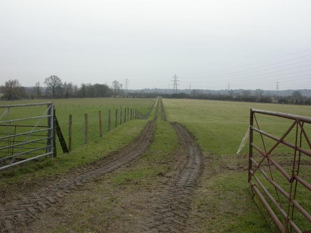Knighton, farm track