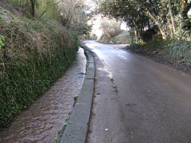 Stream alongside Stream Lane