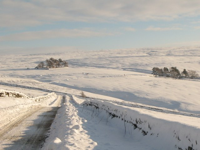 The upper valley of Hollocks Burn in the snow (2)