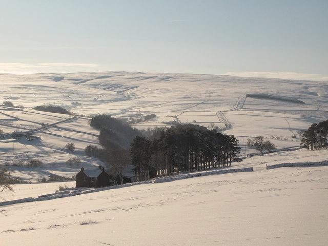 Snowy pastures around East Garret's Hill