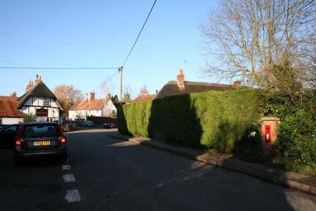 Hedge on Sotwell Street