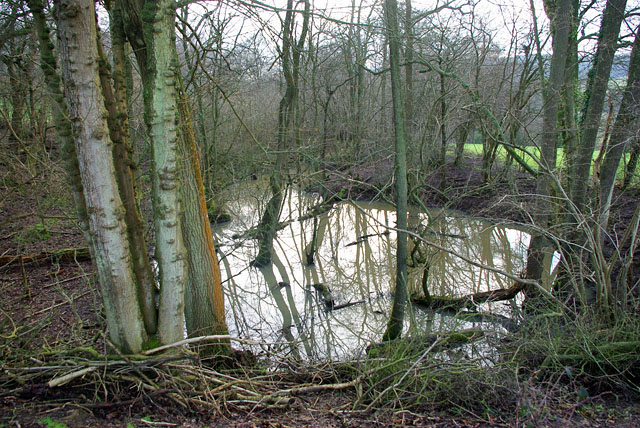 Flooded pit