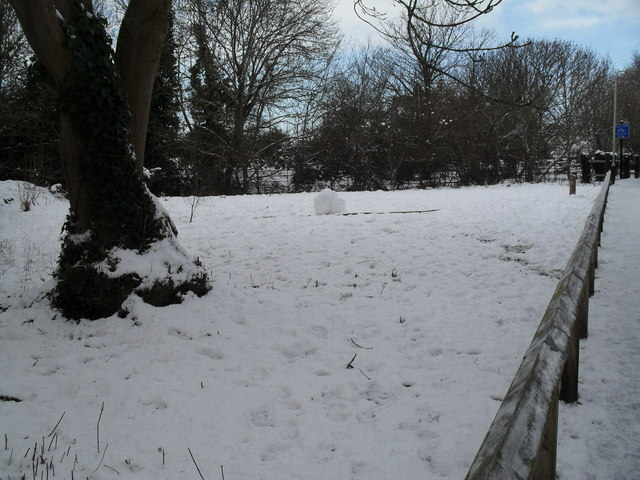 A snowy scene at the Lymbourn Wild Flower Meadow