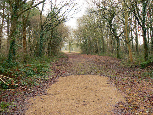 Bridleway out of Bushy Grove, near Breadstone