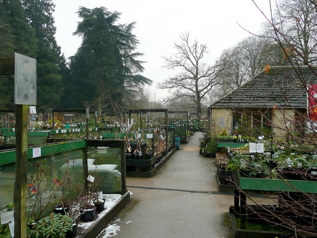 Plant Centre at Westonbirt Arboretum 2