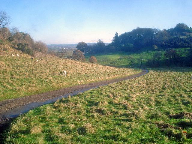 Farm road on Dumbleton Hill
